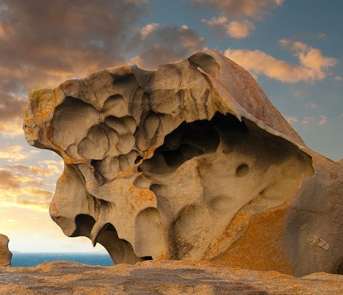 Fig._20_Kangaroo_Island.jpg